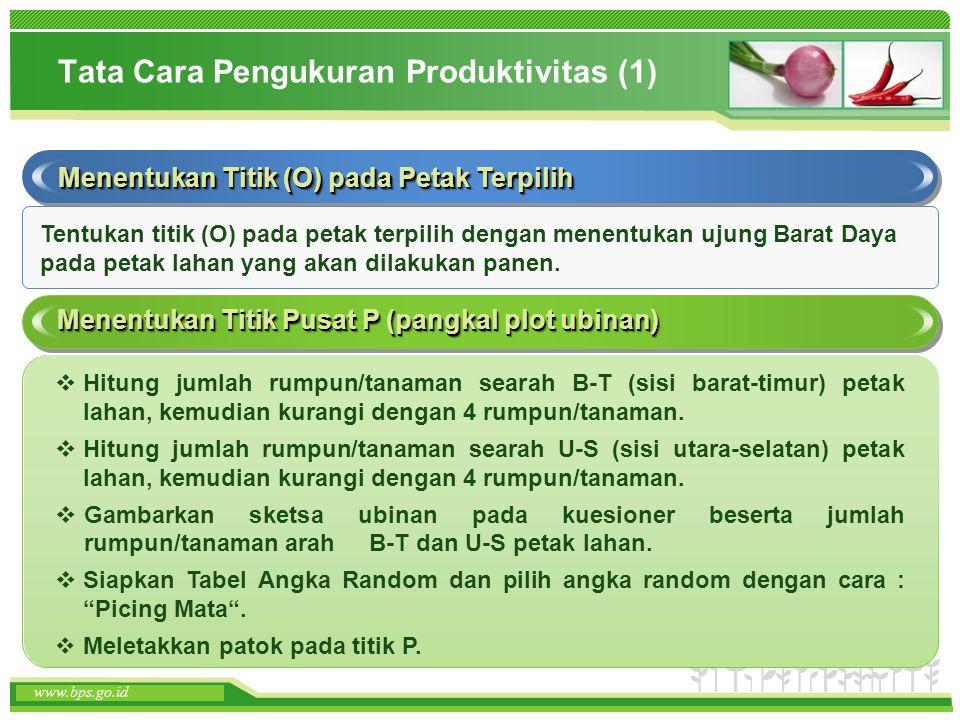 www.themegallery.com www.bps.go.id Tata Cara Pengukuran Produktivitas (1) Menentukan Titik (O) pada Petak Terpilih Menentukan Titik Pusat P (pangkal p