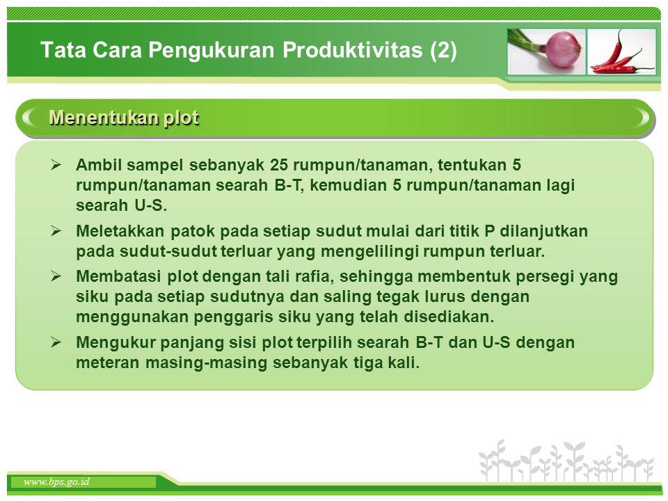 www.themegallery.com www.bps.go.id Tata Cara Pengukuran Produktivitas (2) Menentukan plot  Ambil sampel sebanyak 25 rumpun/tanaman, tentukan 5 rumpun