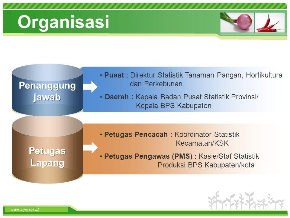 www.themegallery.com www.bps.go.id Organisasi Pusat : Direktur Statistik Tanaman Pangan, Hortikultura dan Perkebunan Daerah : Kepala Badan Pusat Stati