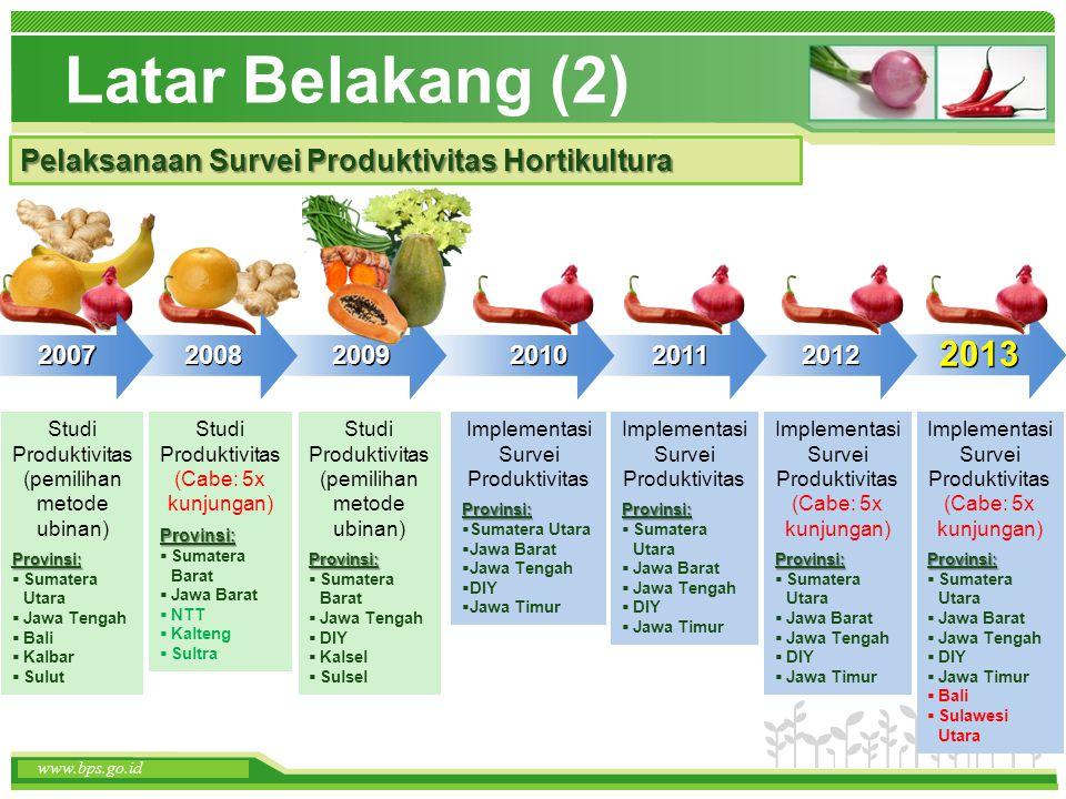 Terima Kasih www.bps.go.id Disampaikan pada video conference Penjelasan Teknis Pengukuran Produktivitas Hortikultura --7 Juni 2013