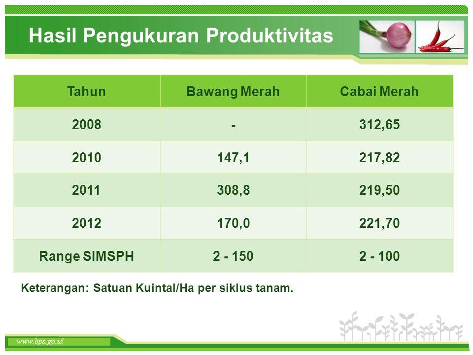 www.themegallery.com www.bps.go.id Hasil Pengukuran Produktivitas www.bps.go.id TahunBawang MerahCabai Merah 2008-312,65 2010147,1217,82 2011308,8219,