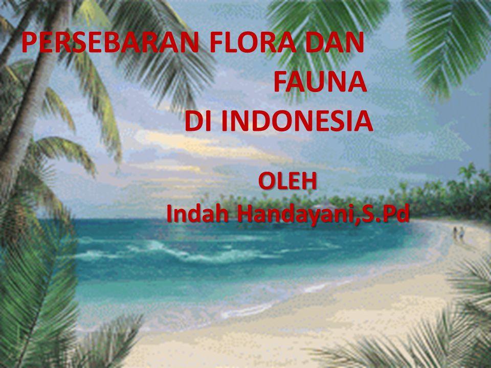 PERSEBARAN FLORA DAN FAUNA DI INDONESIA OLEH Indah Handayani,S.Pd