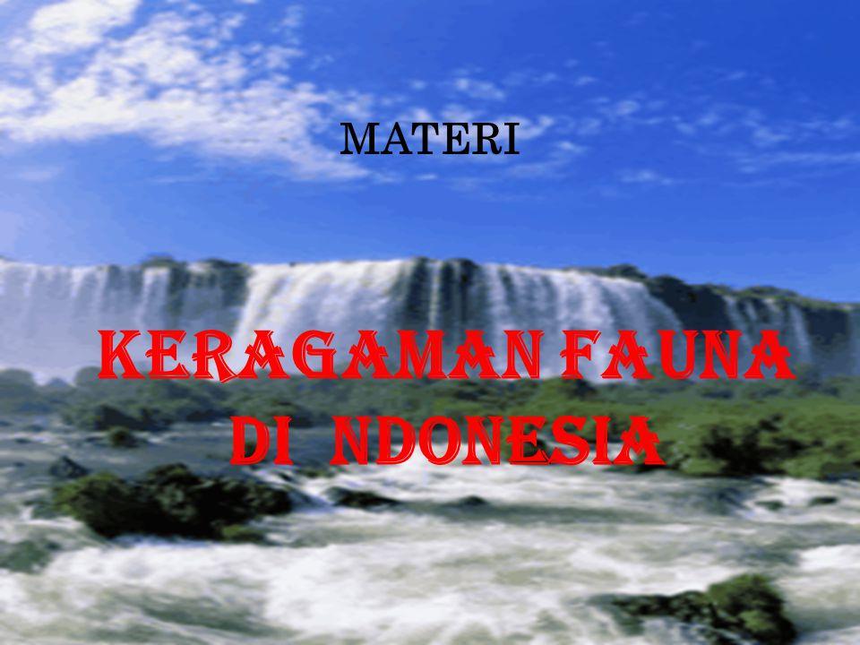 MATERI KERAGAMAN FAUNA DI NDONESIA