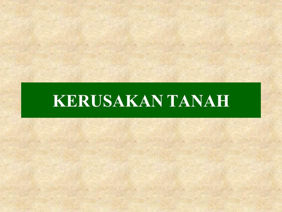 KERUSAKAN TANAH