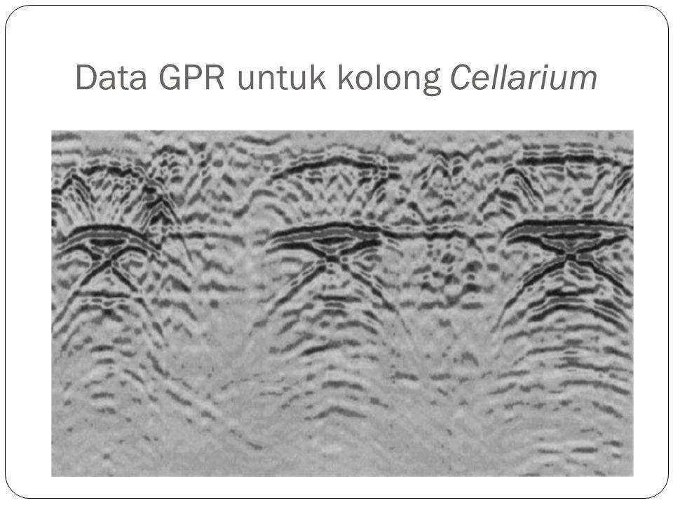 Data GPR untuk kolong Cellarium