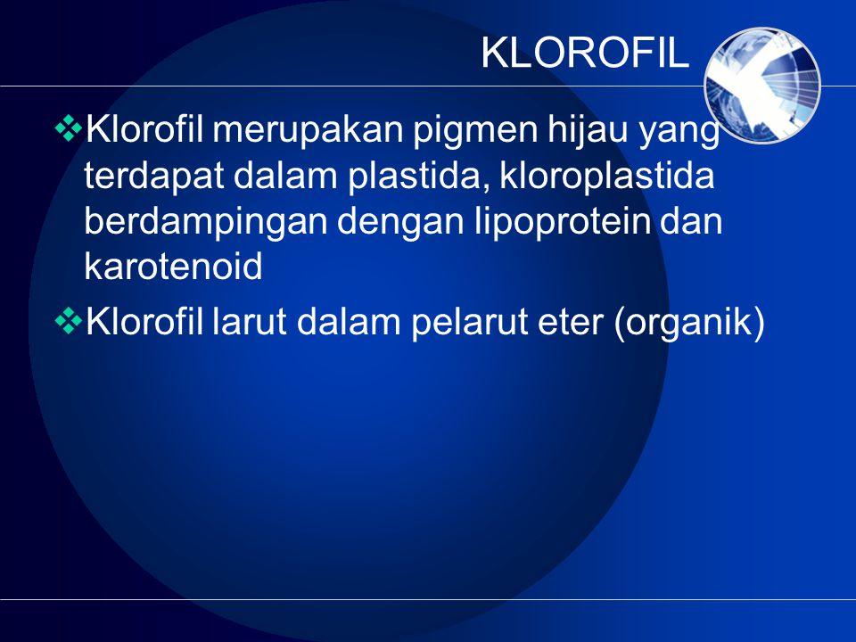 KLOROFIL  Klorofil merupakan pigmen hijau yang terdapat dalam plastida, kloroplastida berdampingan dengan lipoprotein dan karotenoid  Klorofil larut dalam pelarut eter (organik)