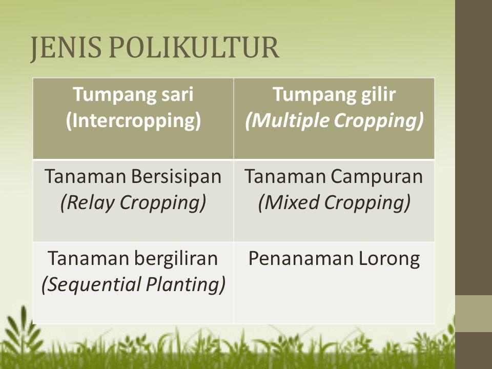 JENIS POLIKULTUR Tumpang sari (Intercropping) Tumpang gilir (Multiple Cropping) Tanaman Bersisipan (Relay Cropping) Tanaman Campuran (Mixed Cropping)