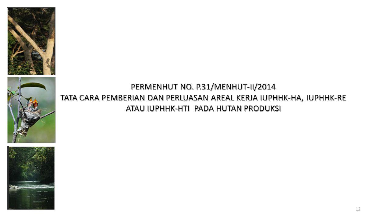 PERMENHUT NO. P.31/MENHUT-II/2014 TATA CARA PEMBERIAN DAN PERLUASAN AREAL KERJA IUPHHK-HA, IUPHHK-RE ATAU IUPHHK-HTI PADA HUTAN PRODUKSI 12