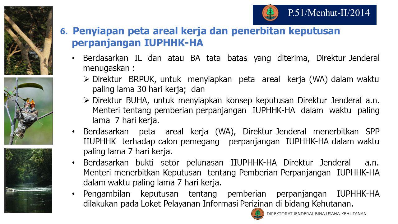 6. Penyiapan peta areal kerja dan penerbitan keputusan perpanjangan IUPHHK-HA Berdasarkan IL dan atau BA tata batas yang diterima, Direktur Jenderal m