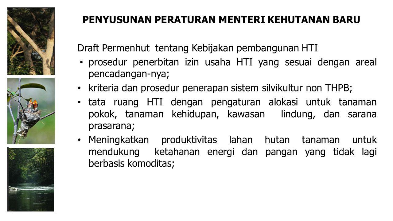 Draft Permenhut tentang Kebijakan pembangunan HTI prosedur penerbitan izin usaha HTI yang sesuai dengan areal pencadangan-nya; kriteria dan prosedur p