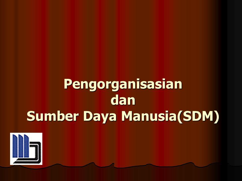 Pengorganisasian dan Sumber Daya Manusia(SDM)