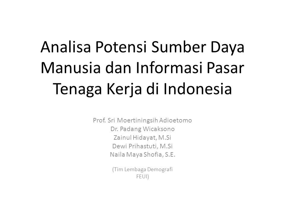 Analisa Potensi Sumber Daya Manusia dan Informasi Pasar Tenaga Kerja di Indonesia Prof. Sri Moertiningsih Adioetomo Dr. Padang Wicaksono Zainul Hidaya