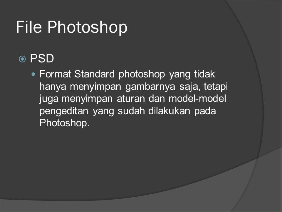 File Photoshop  PSD Format Standard photoshop yang tidak hanya menyimpan gambarnya saja, tetapi juga menyimpan aturan dan model-model pengeditan yang