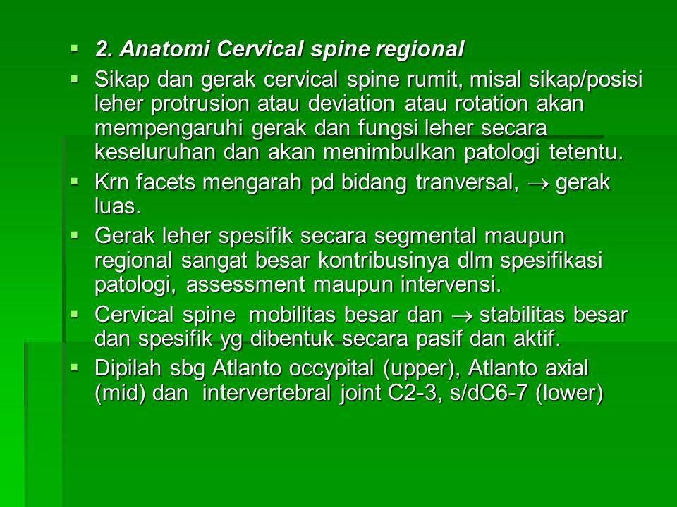  2. Anatomi Cervical spine regional  Sikap dan gerak cervical spine rumit, misal sikap/posisi leher protrusion atau deviation atau rotation akan mem