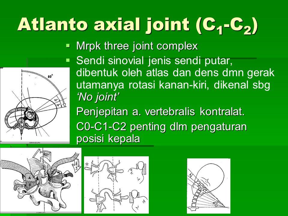 Atlanto axial joint (C 1 -C 2 )  Mrpk three joint complex  'No joint'  Sendi sinovial jenis sendi putar, dibentuk oleh atlas dan dens dmn gerak uta