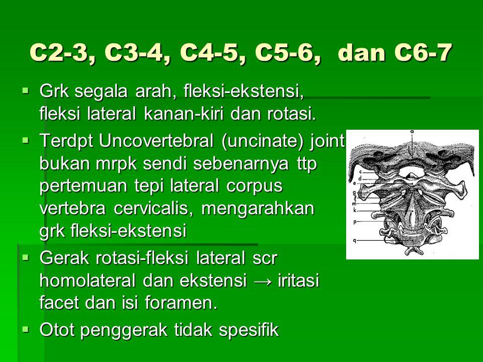 C2-3, C3-4, C4-5, C5-6, dan C6-7  Grk segala arah, fleksi-ekstensi, fleksi lateral kanan-kiri dan rotasi.  Terdpt Uncovertebral (uncinate) joint buk