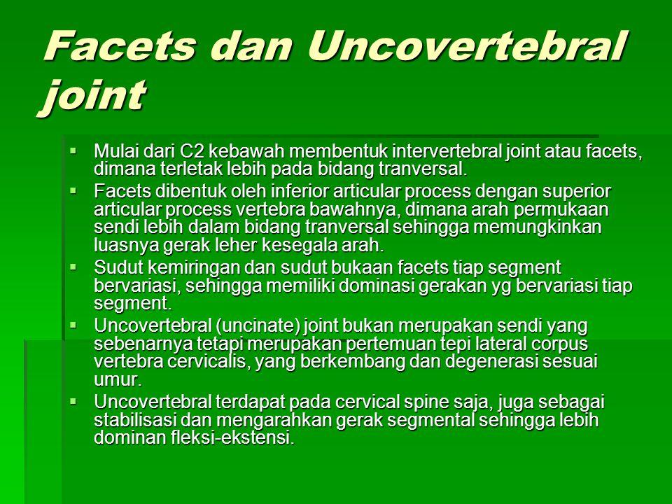 Facets dan Uncovertebral joint  Mulai dari C2 kebawah membentuk intervertebral joint atau facets, dimana terletak lebih pada bidang tranversal.  Fac