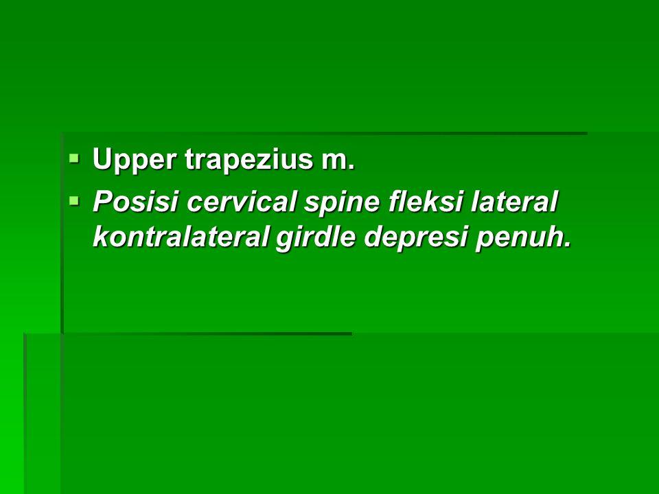  Upper trapezius m.  Posisi cervical spine fleksi lateral kontralateral girdle depresi penuh.