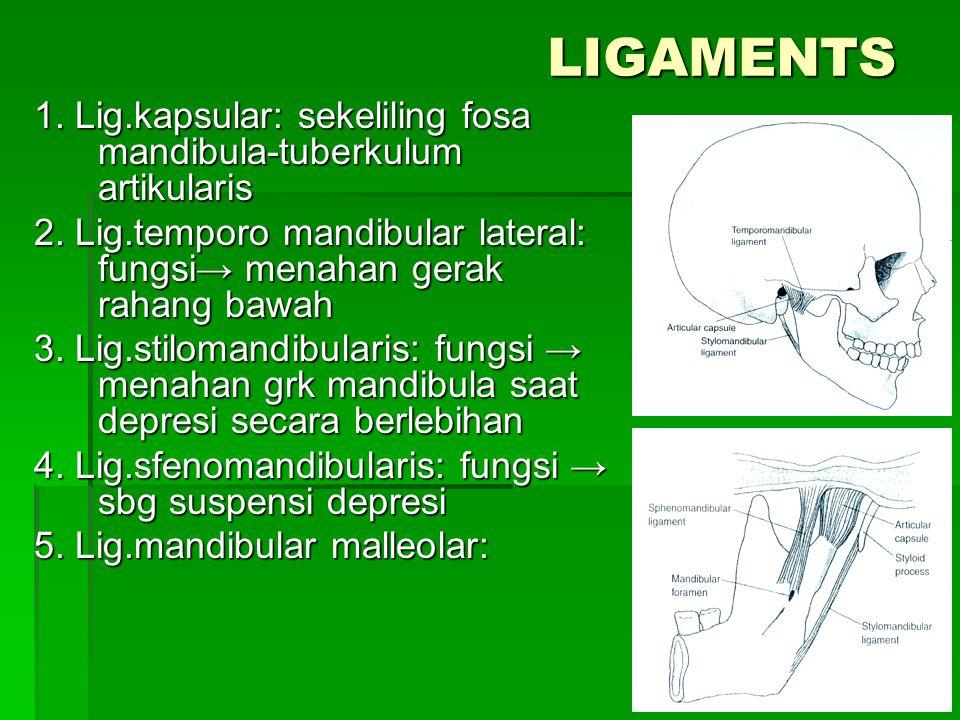 LIGAMENTS 1. Lig.kapsular: sekeliling fosa mandibula-tuberkulum artikularis 2. Lig.temporo mandibular lateral: fungsi→ menahan gerak rahang bawah 3. L