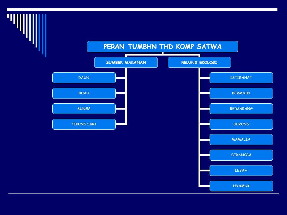 PERAN TUMBHN THD KOMP ABIOTIK HIDRO-OROLOGI INTERSEPSI CH ARSITEKTR PHN STEMFLOW PHYLLOTAXI EVAPOTRANSP.