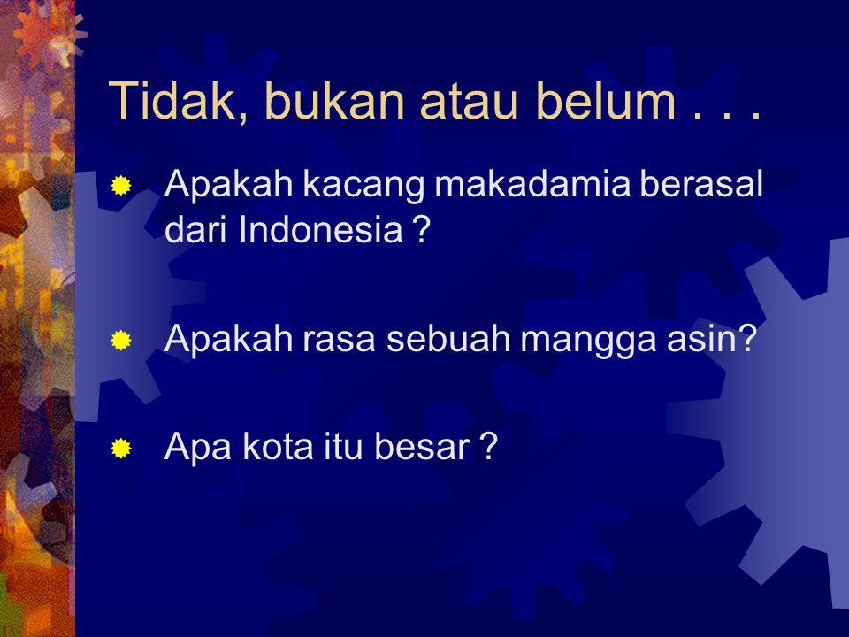 Tidak, bukan atau belum... Apakah kacang makadamia berasal dari Indonesia .