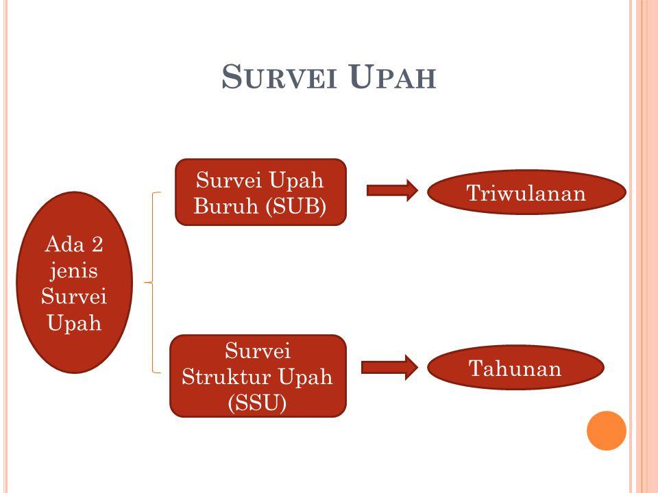 S URVEI U PAH Ada 2 jenis Survei Upah Triwulanan Tahunan Survei Upah Buruh (SUB) Survei Struktur Upah (SSU)