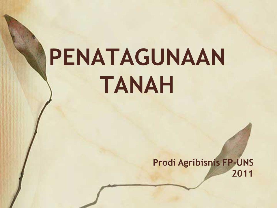 Prodi Agribisnis FP-UNS 2011 PENATAGUNAAN TANAH
