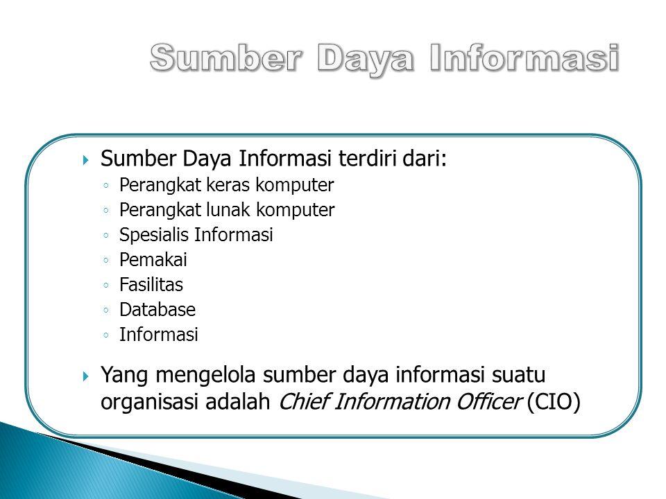  Sumber Daya Informasi terdiri dari: ◦ Perangkat keras komputer ◦ Perangkat lunak komputer ◦ Spesialis Informasi ◦ Pemakai ◦ Fasilitas ◦ Database ◦ Informasi  Yang mengelola sumber daya informasi suatu organisasi adalah Chief Information Officer (CIO) 13
