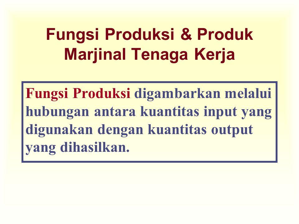 Fungsi Produksi & Produk Marjinal Tenaga Kerja Fungsi Produksi digambarkan melalui hubungan antara kuantitas input yang digunakan dengan kuantitas out