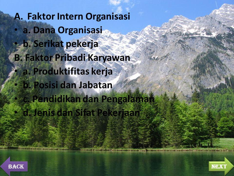 A.Faktor Intern Organisasi a. Dana Organisasi b. Serikat pekerja B. Faktor Pribadi Karyawan a. Produktifitas kerja b. Posisi dan Jabatan c. Pendidikan