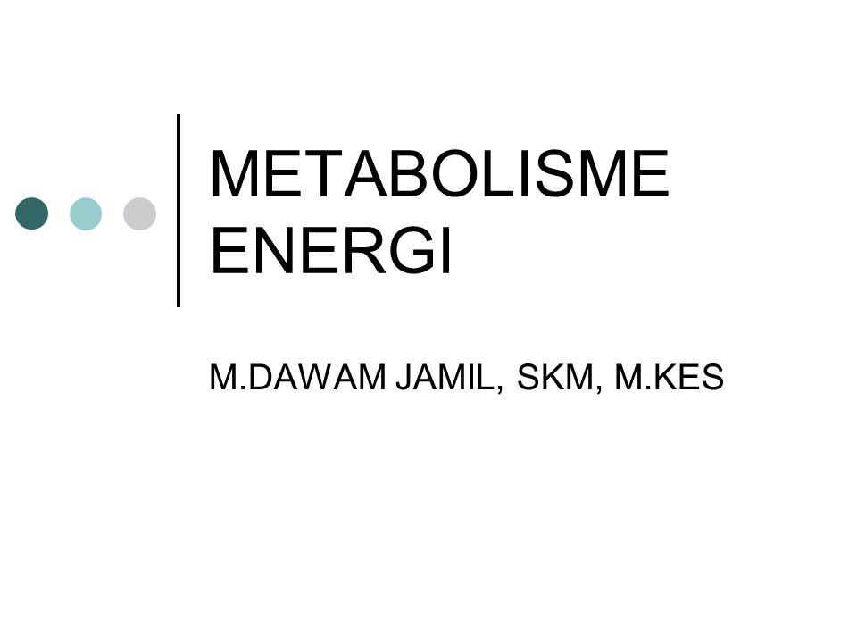 METABOLISME ENERGI M.DAWAM JAMIL, SKM, M.KES