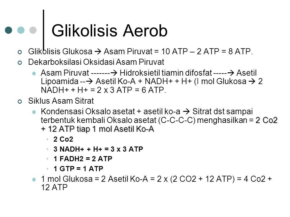 Glikolisis Aerob Glikolisis Glukosa  Asam Piruvat = 10 ATP – 2 ATP = 8 ATP. Dekarboksilasi Oksidasi Asam Piruvat Asam Piruvat -------  Hidroksietil
