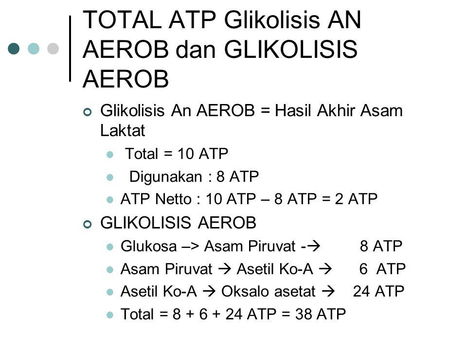 TOTAL ATP Glikolisis AN AEROB dan GLIKOLISIS AEROB Glikolisis An AEROB = Hasil Akhir Asam Laktat Total = 10 ATP Digunakan : 8 ATP ATP Netto : 10 ATP –