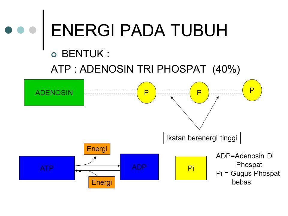 ENERGI PADA TUBUH BENTUK : ATP : ADENOSIN TRI PHOSPAT (40%) ADENOSIN P P P Ikatan berenergi tinggi ATP ADP Pi ADP=Adenosin Di Phospat Pi = Gugus Phosp