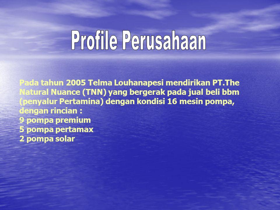 Pada tahun 2005 Telma Louhanapesi mendirikan PT.The Natural Nuance (TNN) yang bergerak pada jual beli bbm (penyalur Pertamina) dengan kondisi 16 mesin pompa, dengan rincian : 9 pompa premium 5 pompa pertamax 2 pompa solar