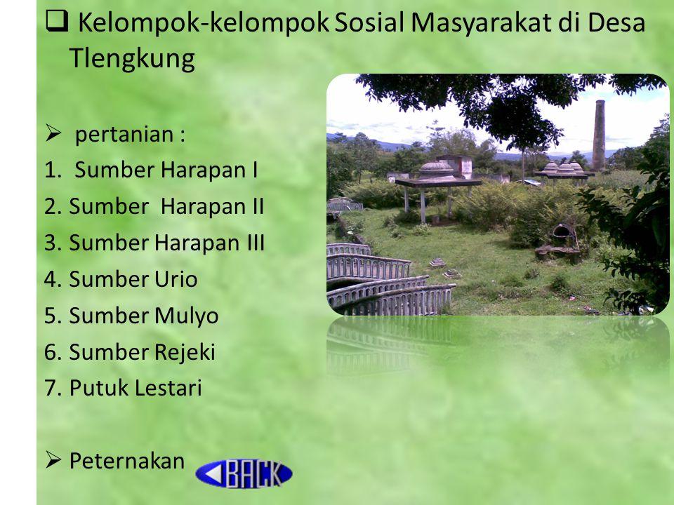  Kelompok-kelompok Sosial Masyarakat di Desa Tlengkung  pertanian : 1.