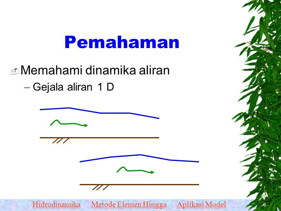 HidrodinamikaMetode Elemen HinggaAplikasi Model Hidrodinamika  Pemahaman hidrodinamika aliran dangkal 1-D Pemahaman hidrodinamika aliran dangkal 1-D