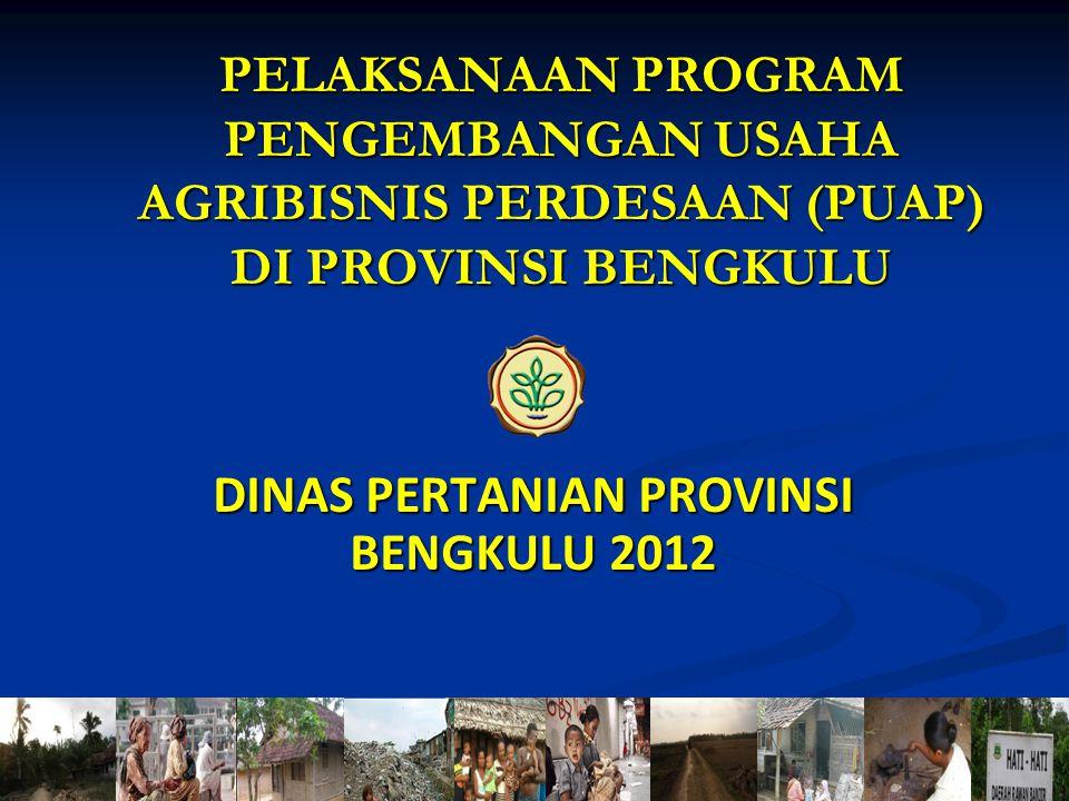 1 DINAS PERTANIAN PROVINSI BENGKULU 2012 PELAKSANAAN PROGRAM PENGEMBANGAN USAHA AGRIBISNIS PERDESAAN (PUAP) DI PROVINSI BENGKULU