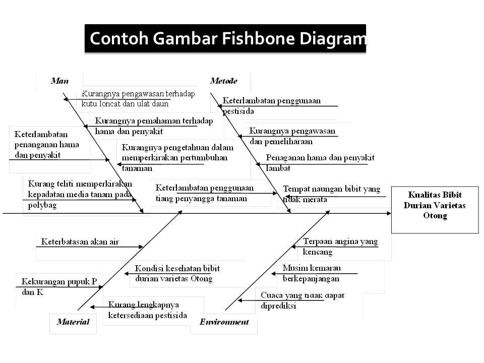 Contoh Gambar Fishbone Diagram