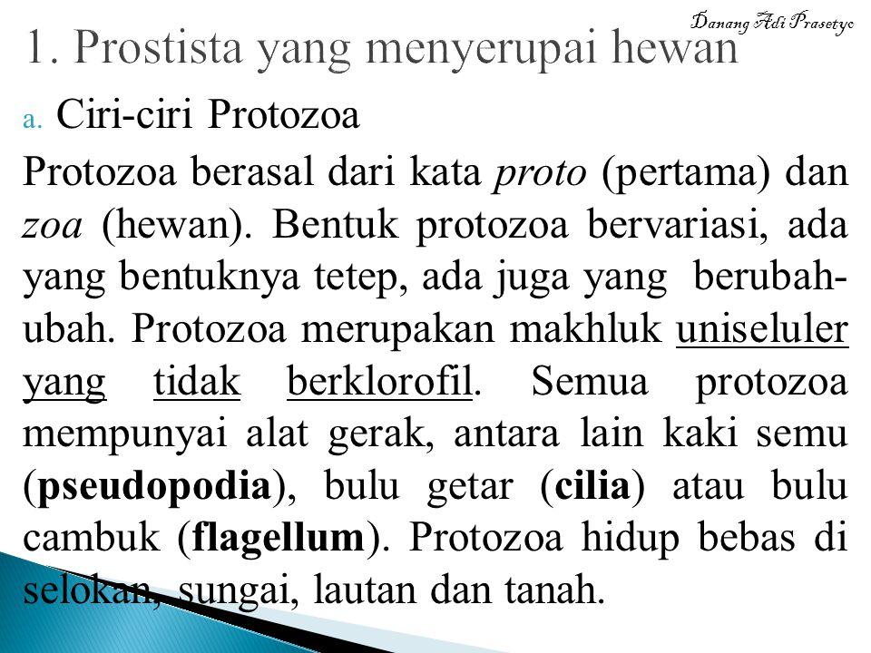 a. Ciri-ciri Protozoa Protozoa berasal dari kata proto (pertama) dan zoa (hewan). Bentuk protozoa bervariasi, ada yang bentuknya tetep, ada juga yang