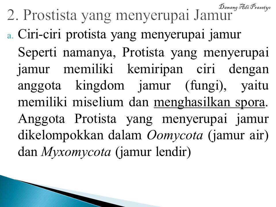 a. Ciri-ciri protista yang menyerupai jamur Seperti namanya, Protista yang menyerupai jamur memiliki kemiripan ciri dengan anggota kingdom jamur (fung