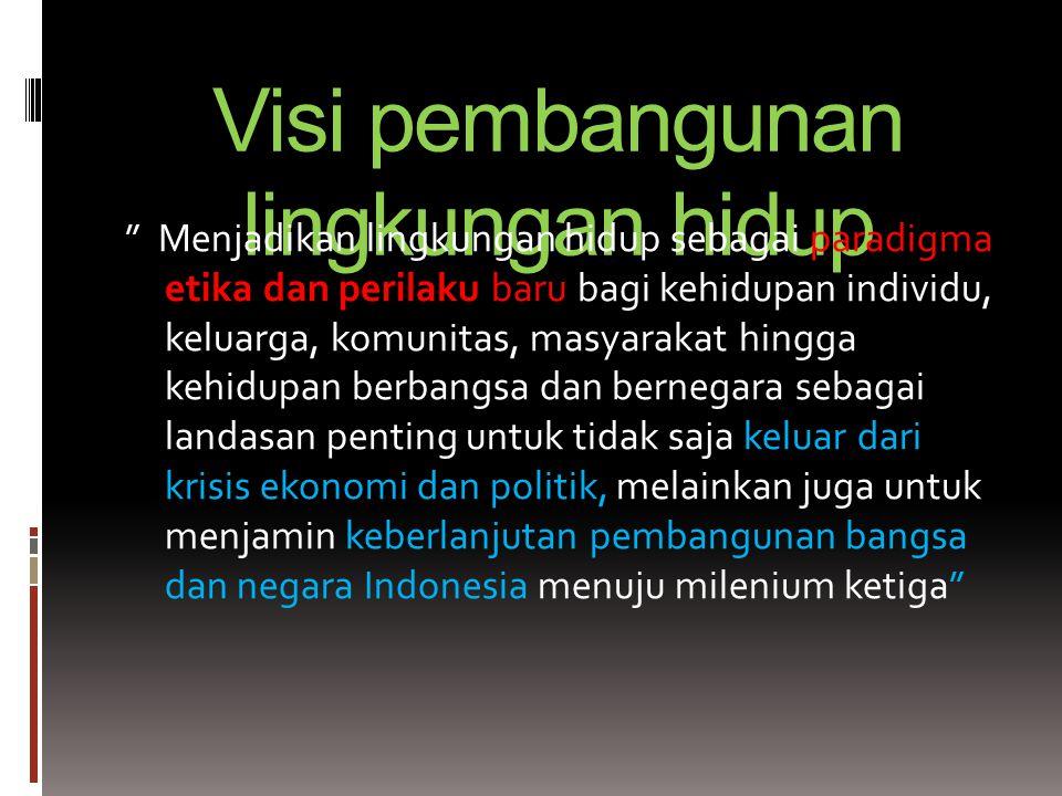Visi pembangunan lingkungan hidup Menjadikan lingkungan hidup sebagai paradigma etika dan perilaku baru bagi kehidupan individu, keluarga, komunitas, masyarakat hingga kehidupan berbangsa dan bernegara sebagai landasan penting untuk tidak saja keluar dari krisis ekonomi dan politik, melainkan juga untuk menjamin keberlanjutan pembangunan bangsa dan negara Indonesia menuju milenium ketiga