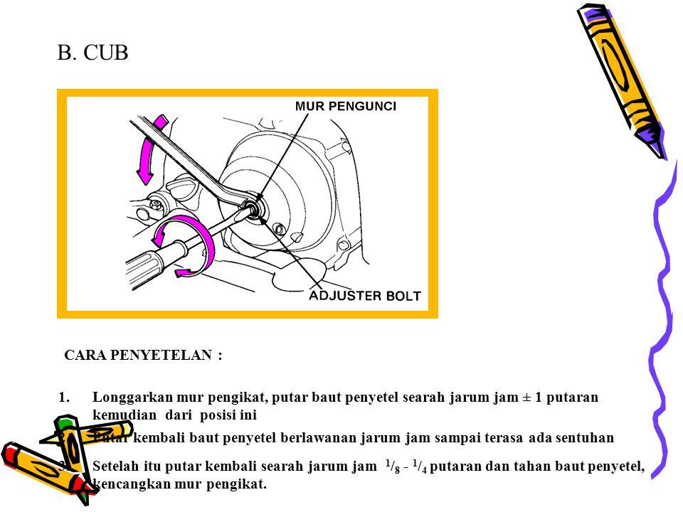 B.CUB 3.