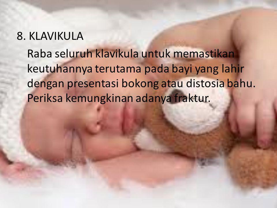 8. KLAVIKULA Raba seluruh klavikula untuk memastikan keutuhannya terutama pada bayi yang lahir dengan presentasi bokong atau distosia bahu. Periksa ke