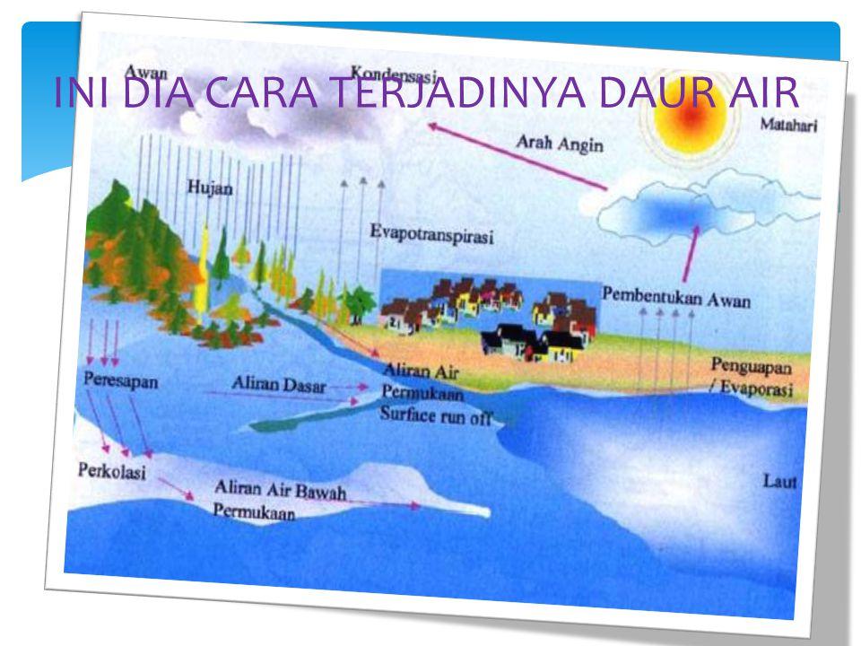 Evaporasi :Penguapan oleh air  Transpirasi :Penguapan air pada tumbuhan  Abrasi :Pengikisan lapisan tanah di pantai Kata tambahan/Sebutan tambahan sebagai ilmu pengetahuan yang bermanfaat