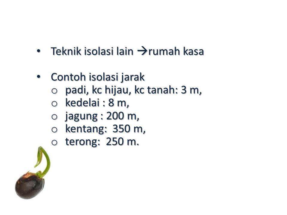 Teknik isolasi lain  rumah kasa Teknik isolasi lain  rumah kasa Contoh isolasi jarak Contoh isolasi jarak o padi, kc hijau, kc tanah: 3 m, o kedelai : 8 m, o jagung : 200 m, o kentang: 350 m, o terong: 250 m.