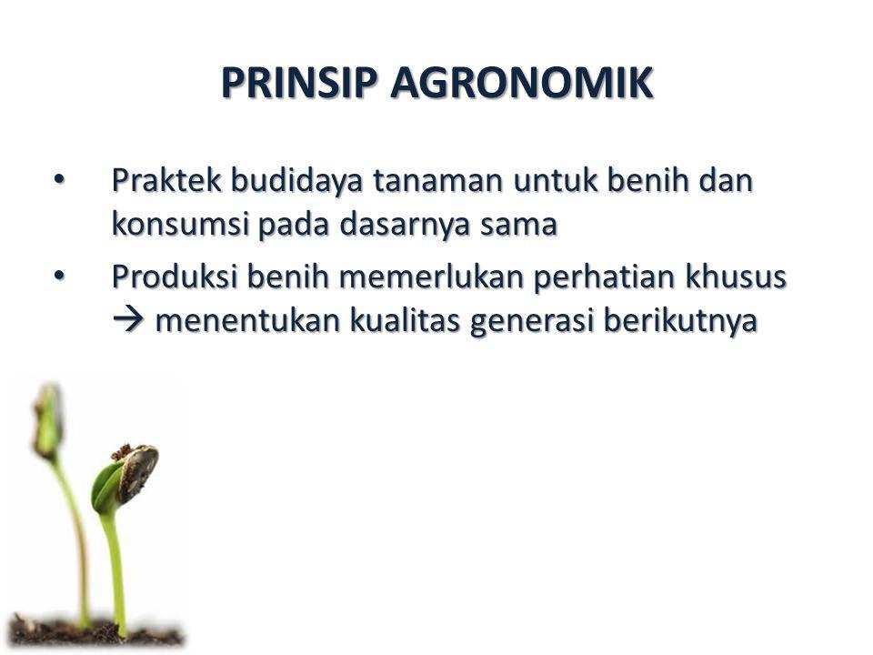 Praktek budidaya tanaman untuk benih dan konsumsi pada dasarnya sama Praktek budidaya tanaman untuk benih dan konsumsi pada dasarnya sama Produksi benih memerlukan perhatian khusus  menentukan kualitas generasi berikutnya Produksi benih memerlukan perhatian khusus  menentukan kualitas generasi berikutnya