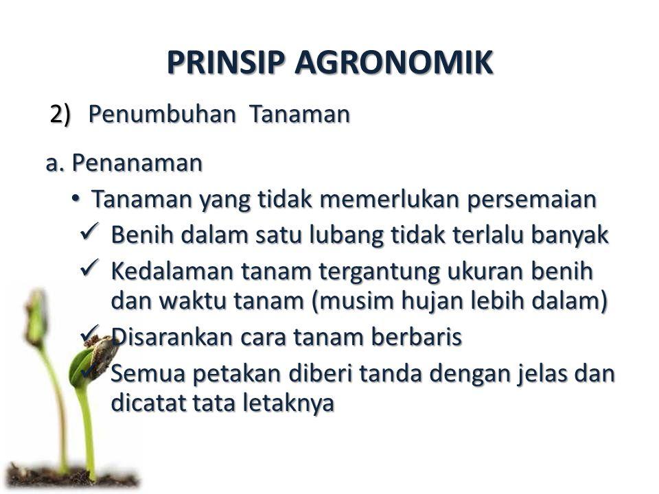 PRINSIP AGRONOMIK 2)Penumbuhan Tanaman a. Penanaman Tanaman yang tidak memerlukan persemaian Tanaman yang tidak memerlukan persemaian Benih dalam satu