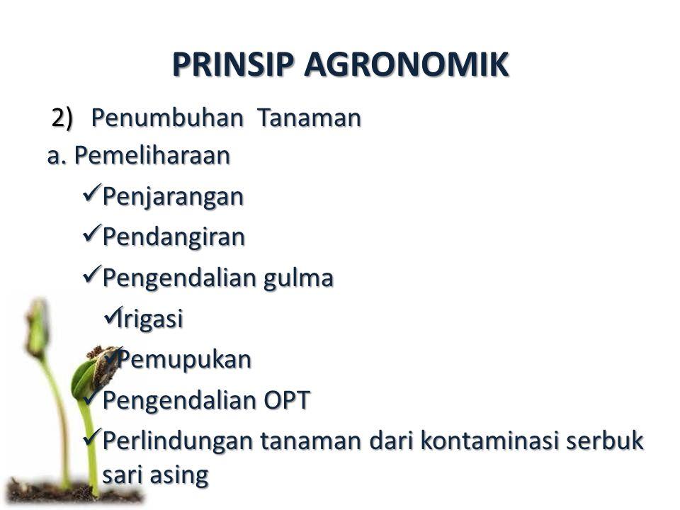 PRINSIP AGRONOMIK 2)Penumbuhan Tanaman a. Pemeliharaan Penjarangan Penjarangan Pendangiran Pendangiran Pengendalian gulma Pengendalian gulma Irigasi I