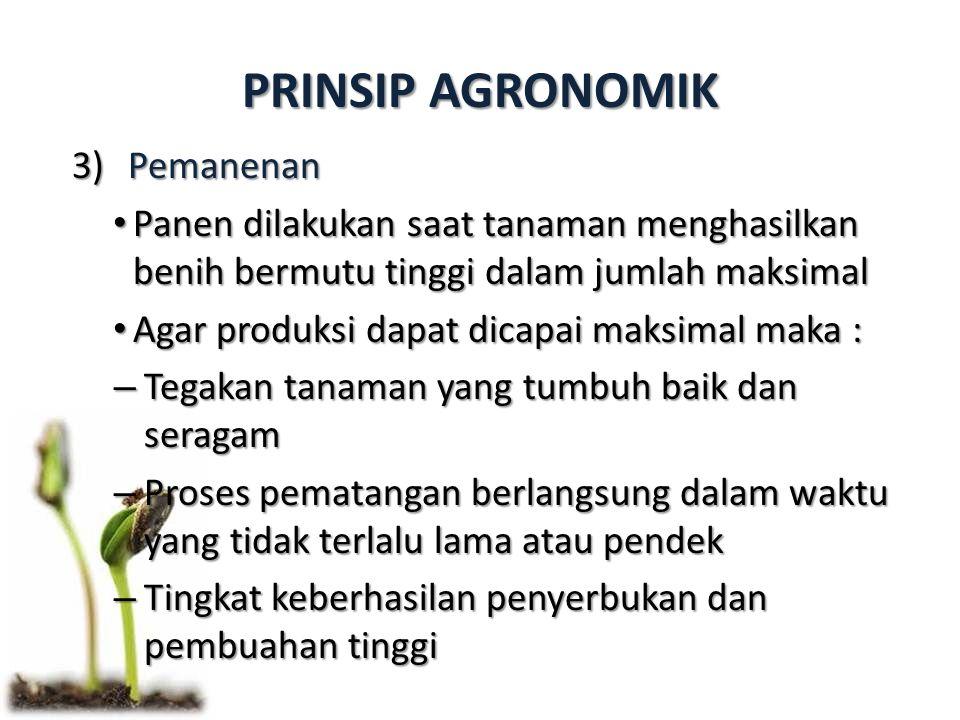 PRINSIP AGRONOMIK 3)Pemanenan Panen dilakukan saat tanaman menghasilkan benih bermutu tinggi dalam jumlah maksimal Panen dilakukan saat tanaman mengha